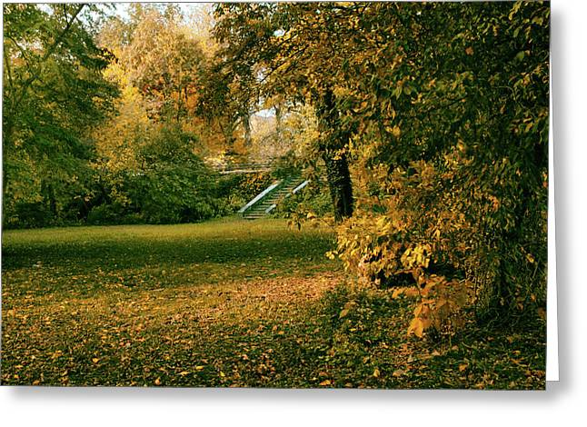 Autumn Meadow Entrance  Greeting Card