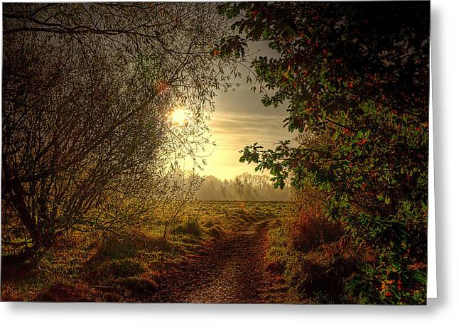 Autumn Mist Greeting Card by Kim Shatwell-Irishphotographer