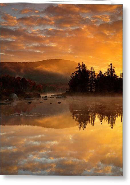 Greeting Card featuring the photograph Autumn Mist by Mike Lang