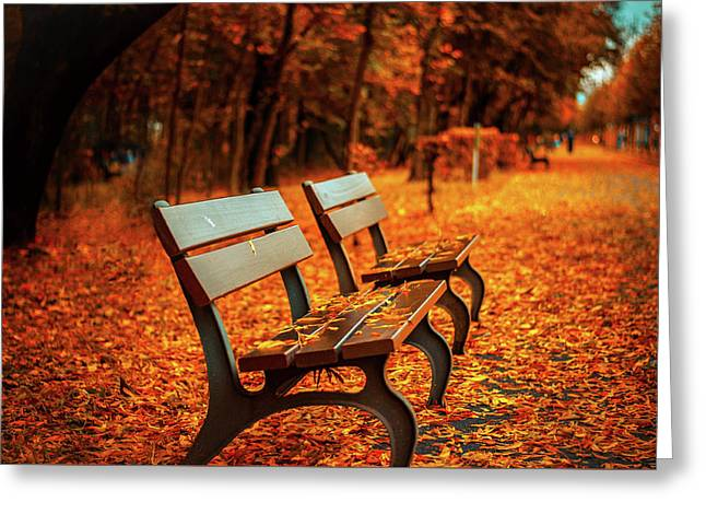 Autumn Moments Greeting Card by Happy Home Artistry