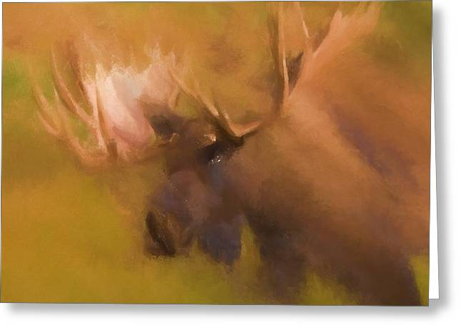 Autumn Moose Greeting Card by Dan Sproul