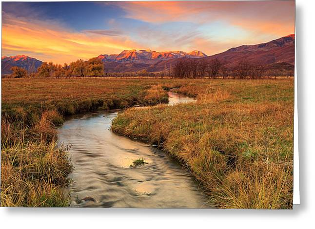 Autumn Morning In Heber Valley. Greeting Card