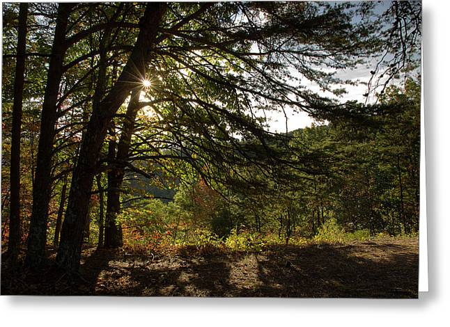Autumn Morning Greeting Card by Mike Eingle