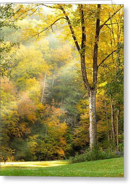 Autumn Morning Rays Greeting Card