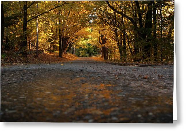 Autumn Mornings Greeting Card by Sue OConnor