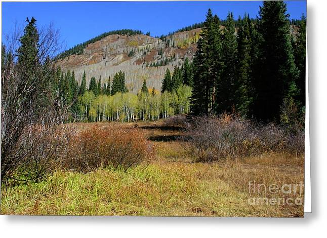 Autumn Mountain Greeting Card by Crystal Garner