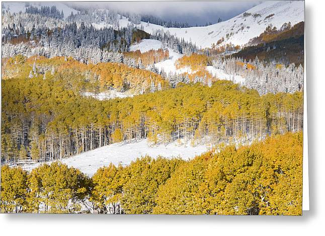Autumn Mountain Side Greeting Card by Leland D Howard
