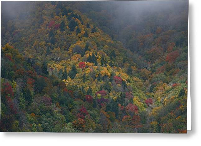 Autumn Mountains Greeting Card by James Jones