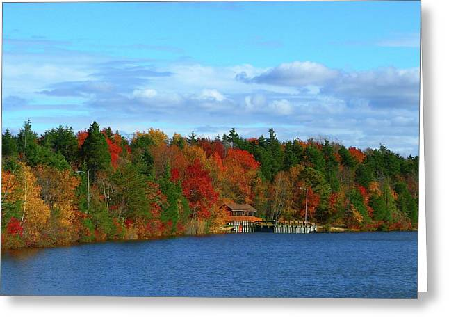 Autumn On Bamber Lake Greeting Card by George Martinez