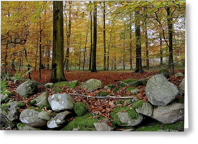 Autumn On Fyn Greeting Card by Robert Lacy
