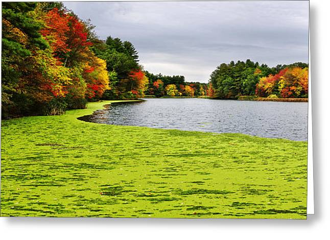 Autumn On Grist Mill Pond In Sudbury Greeting Card by Luke Moore