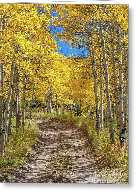 Autumn On Medano Pass Greeting Card