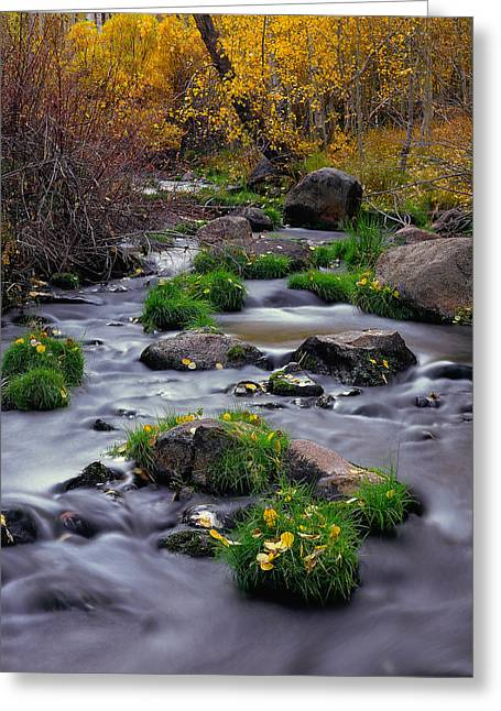 Autumn On Mill Creek Greeting Card