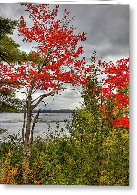 Greeting Card featuring the photograph Autumn On Raquette Lake by David Patterson