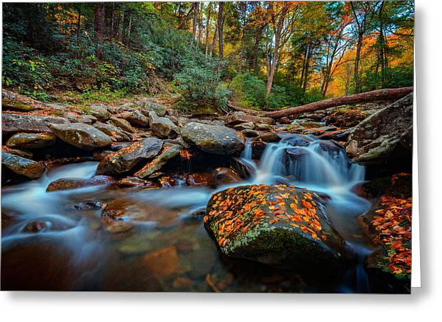 Autumn On The Chimney Tops Trail Greeting Card by Rick Berk