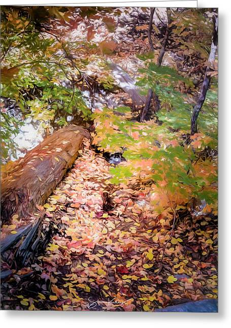 Autumn On The Mountain Greeting Card