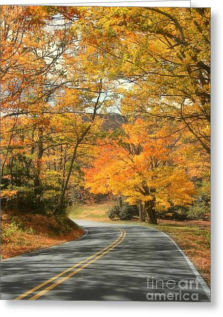 Autumn On The Parkway Greeting Card