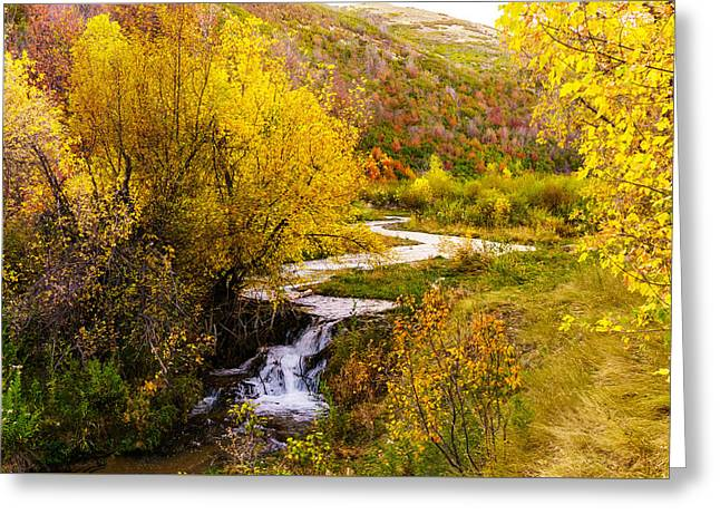 Autumn On The Provo Deer Creek Greeting Card by TL  Mair