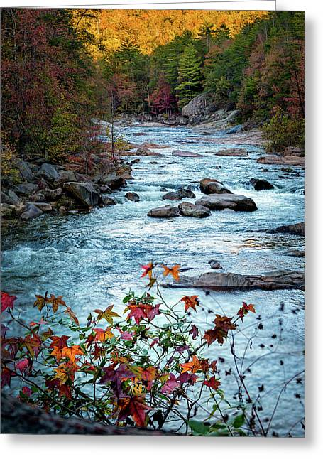 Autumn On Wilson Creek Greeting Card