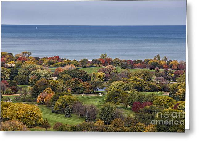 Autumn Over The Park And Lake In Chicago Illinois  Greeting Card