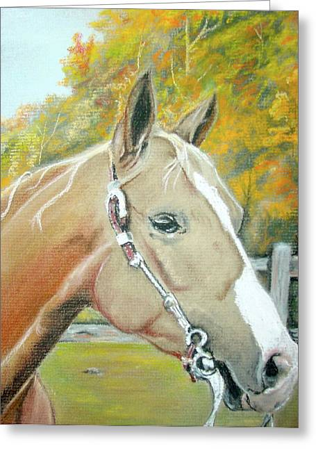 Autumn Palomino Greeting Card by Crystal  Harris-Donnelly