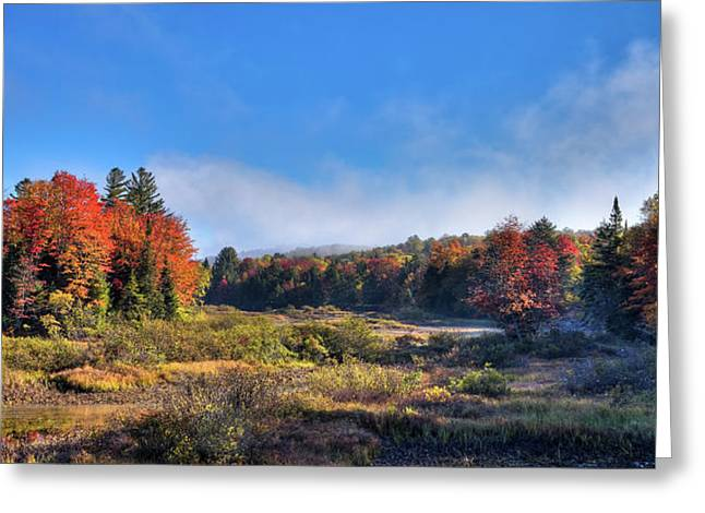 Greeting Card featuring the photograph Autumn Panorama At The Green Bridge by David Patterson