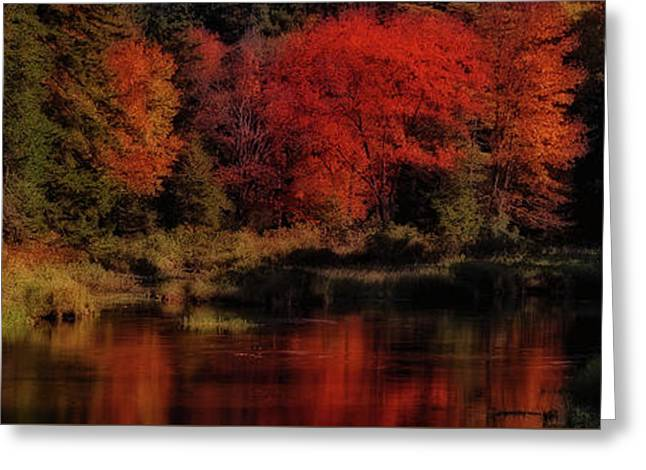 Autumn Panorama Greeting Card by David Patterson