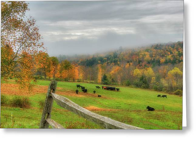 Greeting Card featuring the photograph Autumn Pasture -  by Joann Vitali