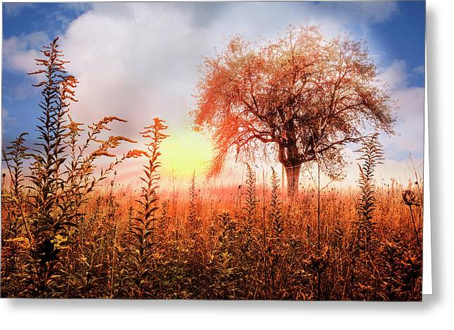 Autumn Pastures Greeting Card by Debra and Dave Vanderlaan