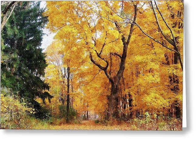 Autumn Path Greeting Card by Susan Savad