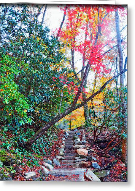 Autumn Pathway Greeting Card by Brittany H
