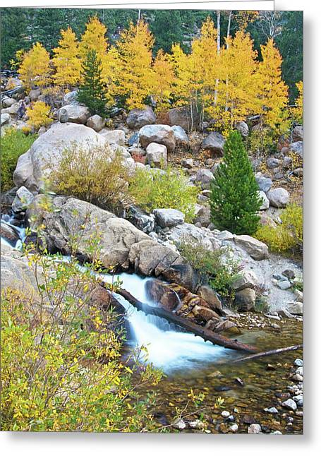 Greeting Card featuring the photograph Autumn Peace by Gary Lengyel