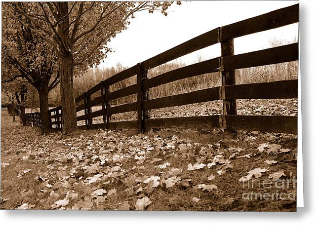 Autumn Perspective Greeting Card by Joe  Ng