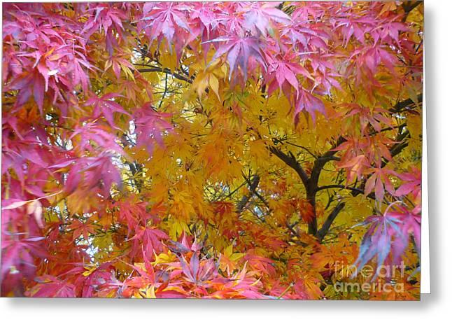 Autumn Pink Greeting Card