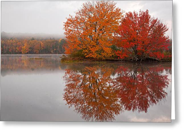Maine Lake Greeting Cards - Autumn Pond Greeting Card by Patrick Downey