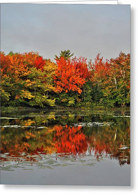 Autumn Portrait Greeting Card