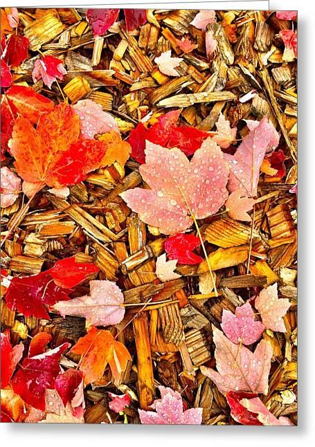 Autumn Potpourri Greeting Card