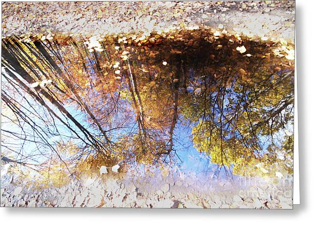 Autumn Print Greeting Card by Mircea Costina Photography