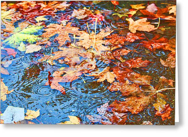 Greeting Card featuring the photograph Autumn Rain by Sergey and Svetlana Nassyrov
