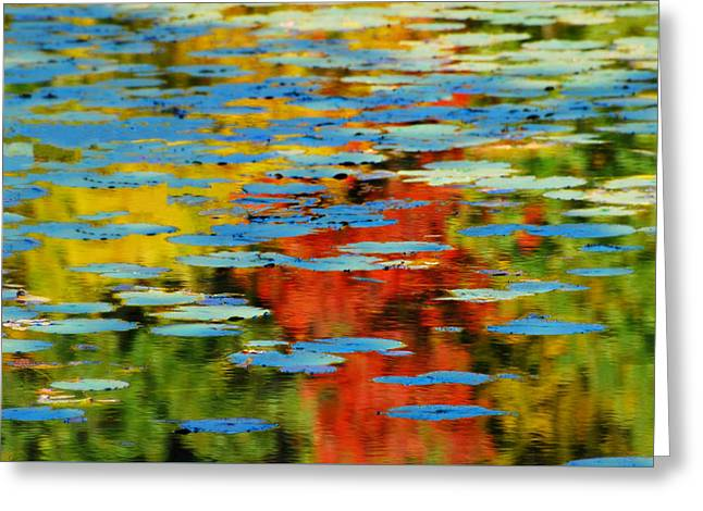 Greeting Card featuring the photograph Autumn Lily Pads by Diana Angstadt