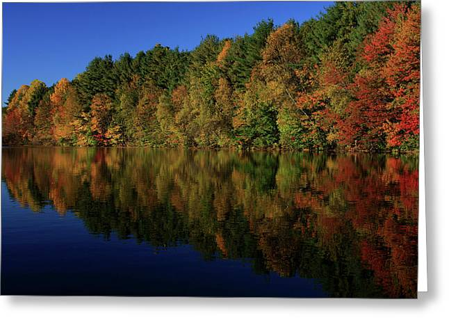 Autumn Reflection Of Colors Greeting Card by Karol Livote