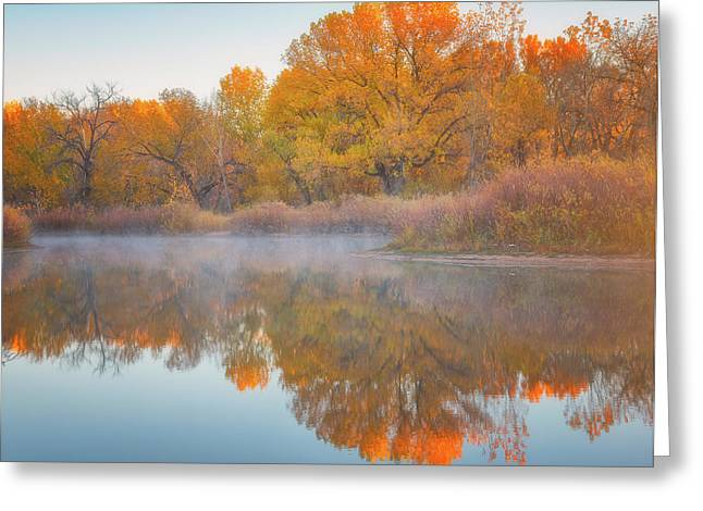 Autumn Reflections Greeting Card by Darren White