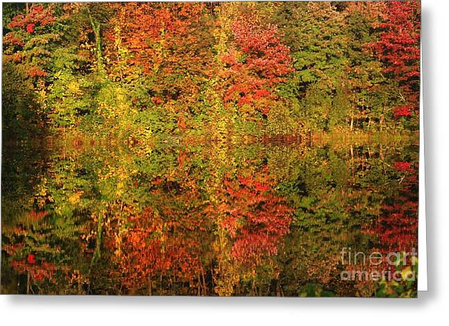 Autumn Reflections In A Pond Greeting Card