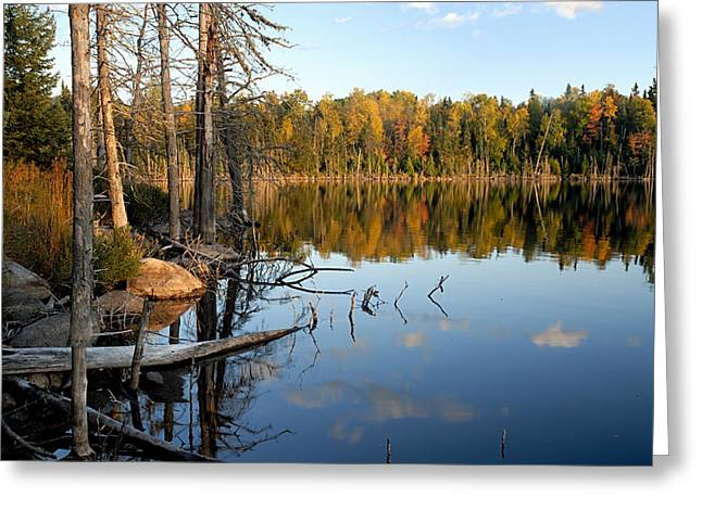 Autumn Reflections On Little Bass Lake Greeting Card by Larry Ricker