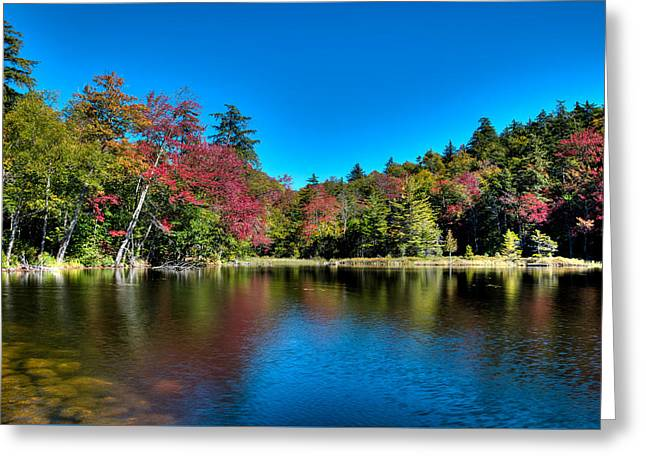 Autumn Reflections On Seventh Lake Greeting Card by David Patterson