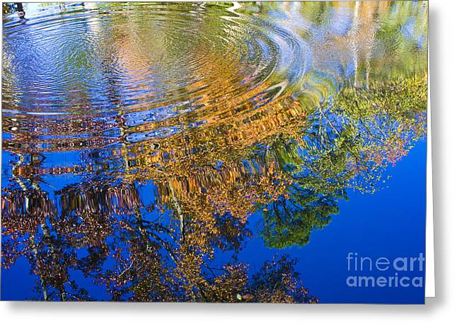 Autumn Reflections Greeting Card by Tim Hightower