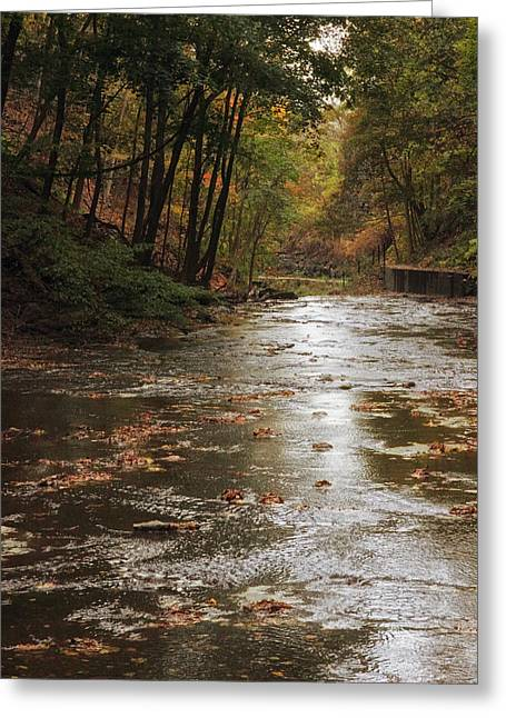 Autumn River Glow Greeting Card by Jessica Jenney