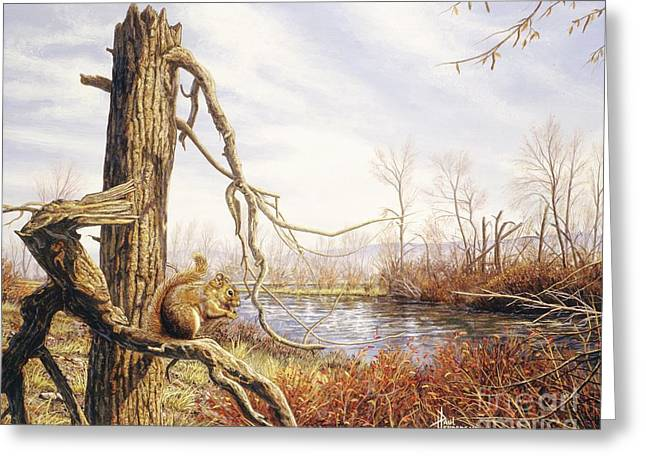 Autumn River-red Squirrel Greeting Card