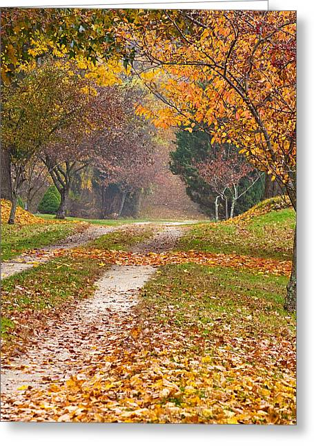 Autumn Road Greeting Card by Stephen Sisk
