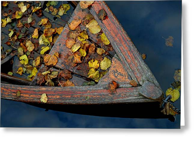Autumn Greeting Card by Robert Lacy